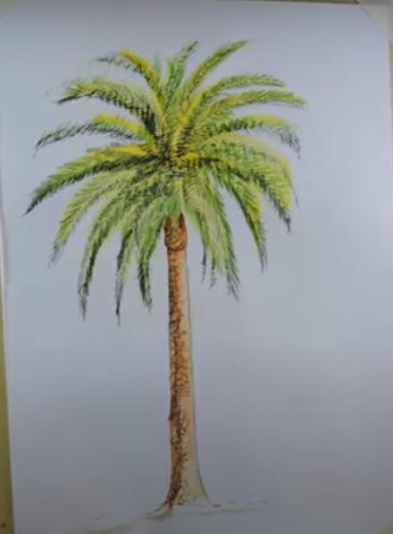 draw a tree
