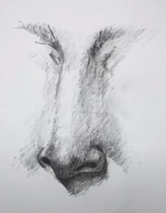 simple pencil sketch of girl
