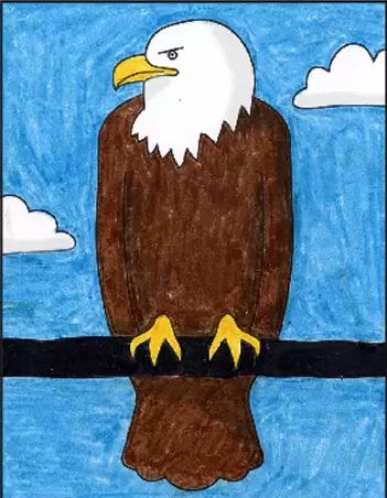 Draw a Bald Eagle